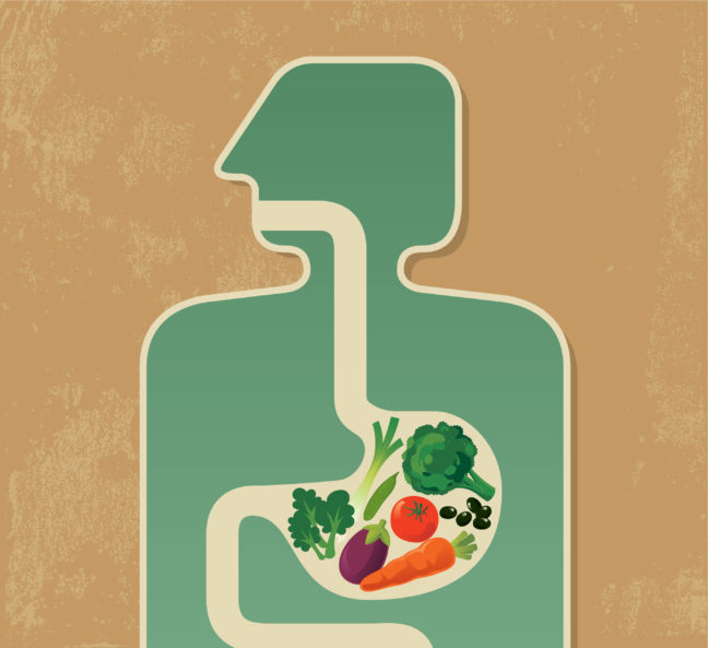Tips on Optimizing Digestion
